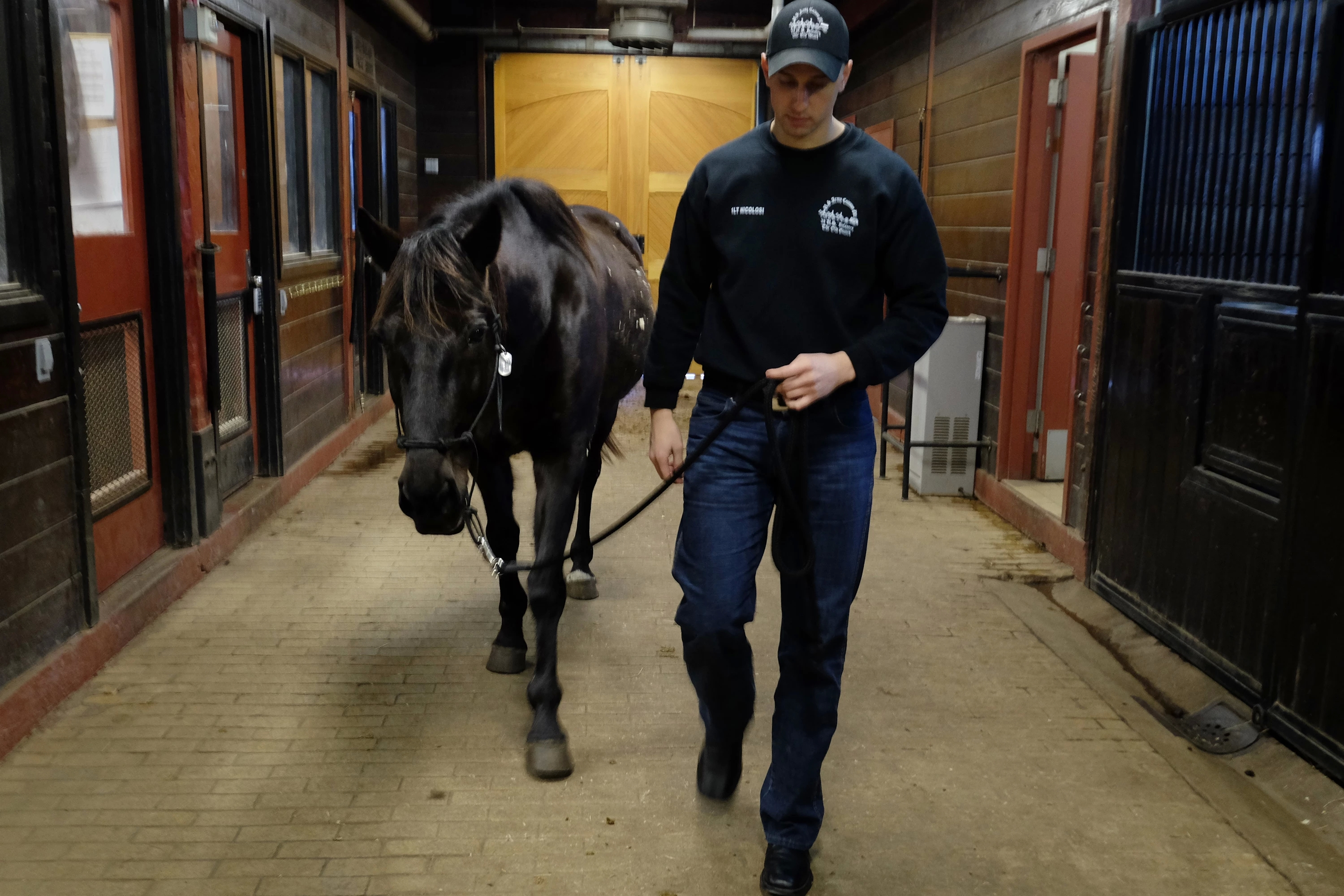 Lieutenant Daniel Nicolosi escorts Kennedy — one of two horses available for adoption — in the Caisson barn at Fort Myer. (Bonnie Jo Mount/Washington Post)